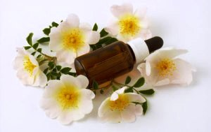 Flower Essence To Elevate Mood And Increase Self Immunity!