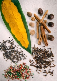 http://www.altmedicinezone.com/wp-content/uploads/2008/05/herbal-acne-remedy.jpg