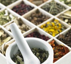 Chinese herbs for effective acne curealternative medicine
