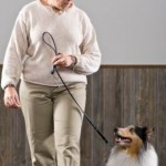 Dogs As Alternative Therapy?