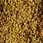 Fenugreek – The Wonder Food