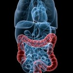 Everything You Need to Know About Colon Therapy