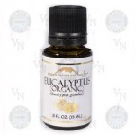 Using the Magic of Eucalyptus Essential Oil
