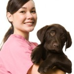 Alternative Treatments for Pets Becoming Popular