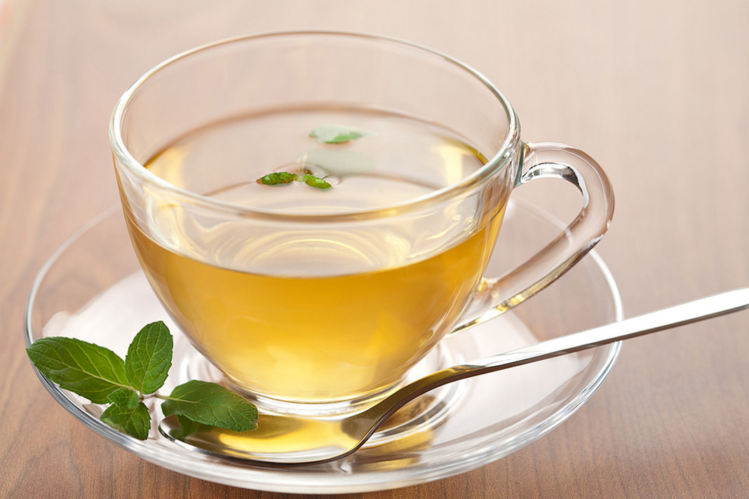 Catnip Tea – Explore The Many Benefits