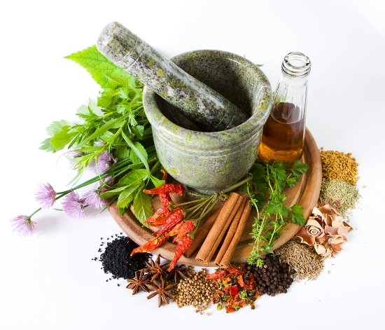 facts about herbal medicine