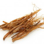 benefits and advantages of bupleurum root