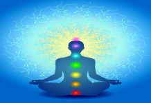 The Seven Chakras of the Human Body